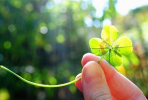 9 loại đá quý may mắn đem lại năng lượng tích cực bạn nên biết